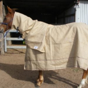 Horse Rugs and Accessories